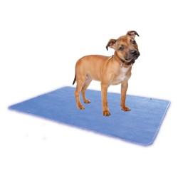 Other - ZP16P24RP - Zorbipad Zp16p24rp Indoor Turn Dog Potty Replacement Pad