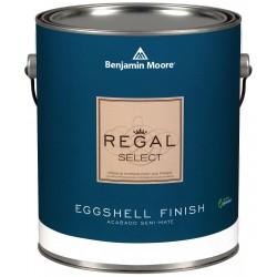 Benjamin moore 05491x0010098144 interior paint for Benjamin moore pristine