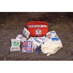 Medique - 22473 - First Aid Kit, Kit, Nylon Case Material, General Purpose, 10 People Served Per Kit