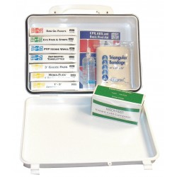 Medique - 83667 - First Aid Kit, Kit, Plastic Case Material, General Purpose, 10 People Served Per Kit