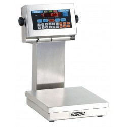 Doran Scales - 22100CW/12 - 100 lb. Digital LED Platform Bench Scale