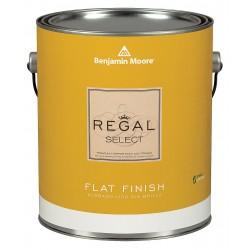 Benjamin Moore N4001x001oc56 Exterior Paint Flat 1 Gal Moonshine