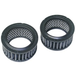 Newstripe - 10001860 - Replacement Individual Carbon Filter, PK2