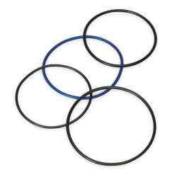 Pentair - 88BV-75 - Basket O-Ring, For Use With 88 Swing Bolt Size 1 And 2 Housings