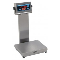 Doran Scales - APS7500XL/18 - 500 lb. Digital LED Platform Bench Scale