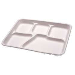Disposable Beverage and Carryout Trays