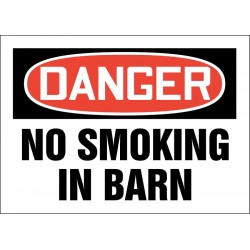 Accuform Signs - 219066-7X10P - No Smoking, Danger, Plastic, 7 x 10, With Mounting Holes, Not Retroreflective