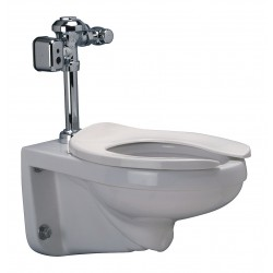 Zurn - Z5615.043.01.78.00 - EcoVantage One Piece Flushometer Toilet, 1.28/1.6 Gallons per Flush, White