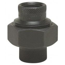 Watts Water Technologies - 2 LF3006 - 2 Black Malleable Iron Dielectric Union with FIP x FIP Fitting Connection Type