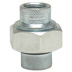 Watts Water Technologies - 2 LF3004 - 2 Galvanized Malleable Iron Dielectric Union with FIP x FIP Fitting Connection Type