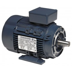Marathon electric regal beloit 63t34fh5401 1 4 hp for Regal beloit electric motors