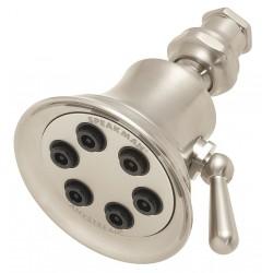 Speakman - S-2254-BN - Brass Wall Shower Head, 2.5 GPM