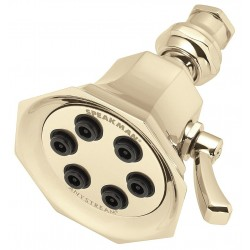 Speakman - S-2255-PB - Brass Wall Shower Head, 2.5 GPM