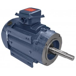 A.O. Smith - CPE18 - 2 HP Close-Coupled Pump Motor, 3-Phase, 1725 Nameplate RPM, 208-230/460 Voltage, 145JM