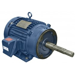 A.O. Smith - CPE31 - 7-1/2 HP Close-Coupled Pump Motor, 3-Phase, 1770 Nameplate RPM, 208-230/460 Voltage, 213JM