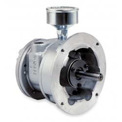 Gast - 6AM-NRV-251 - 4 Flange Mounted Air Motor with 5/8 Shaft Dia. and 1/2 NPT Port Size