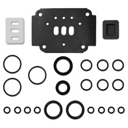 Standard Pump - 200-005 - Rebuild Air Valve Kit
