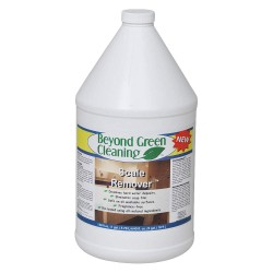 Beyond Green - 9110-004 - 1 gal. Calcium and Lime Remover, 4 PK