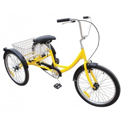 Other - 33X829 - Industrial Tricycle, 24 In, Rear Basket