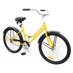 Other - 33X830 - Lady's Bicycle, 26 In, Front Basket