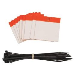 Brady - 102008 - Blank Tag, Orange, Height: 3 x Width: 3, 25 PK