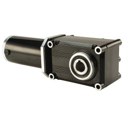 Bison Gear & Engineering - 021-720A0100 - DC Gearmotor 12VDC, Nameplate RPM: 18, Max. Torque: 346.0 in.-lb., Enclosure: TENV