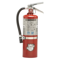 Buckeye Fire Equipment - 13514 - Dry Chemical Fire Extinguisher with 5.5 lb. Capacity and 13 to 15 sec. Discharge Time