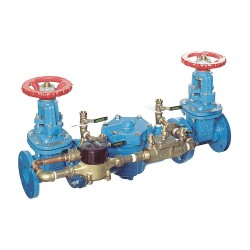 Watts Water Technologies - 007DCDAOSY-GPM - Double Check Detector Assembly, Cast Iron, Watts 007 Series, Flanged Connection