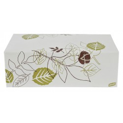Dixie - 964PATH - 5 x 9 x 3 Non Polycoated Paper Carry-Out Carton, White/Brown/Green; PK250