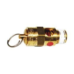 Chicago Pneumatic - 9710533300 - Safety Valve, 1/4, 200 psi