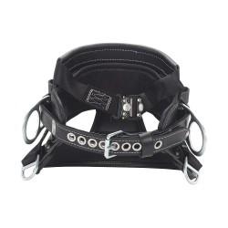DBI / Sala - 1001398 - Body Belt, D24, Zinc Plated Steel, Tongue