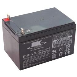 Generac - 316543GS - Battery