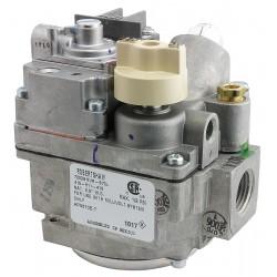 Rheem - SP5870E - Gas Valve Natural