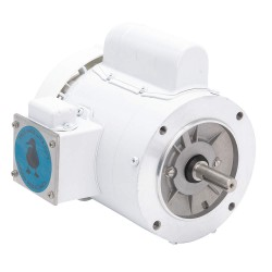 Leeson / Regal Beloit - 114319.00 - 1-1/2 HP Washdown Motor, Capacitor-Start, 1725 Nameplate RPM, 115/230 Voltage, Frame 56C