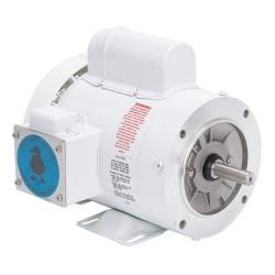 Leeson / Regal Beloit - 112527.00 - 1/2 HP Washdown Motor, Capacitor-Start, 1725 Nameplate RPM, 115/230 Voltage, Frame 56C