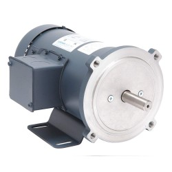 Leeson / Regal Beloit - 098006.00 - 1/2 HP DC Permanent Magnet Motor Permanent Magnet DC, 2500 Nameplate RPM 90VDC Voltage 56C Frame