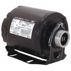 A.O. Smith - CB2034AD - 1/3 HP Split-Phase Carbonator Pump Motor, 1725 Nameplate RPM, 115/230 Voltage, 48Y Frame