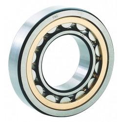 FAG / Schaeffler Technologies - NU205-E-M1-C3 - Cylindrical Roller BRG, Bore 25 mm, Brass