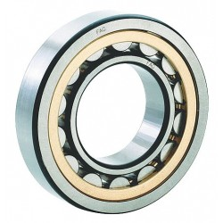 FAG / Schaeffler Technologies - NU207-E-M1-C3 - Cylindrical BRG, Bore 35 mm, Brass
