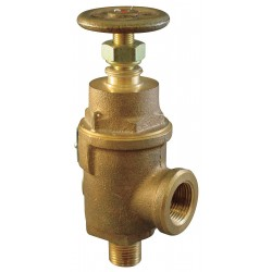 Pentair - 0019-G11-MG0100 - Bronze Adjustable Relief Valve, FNPT Inlet Type, MNPT Outlet Type