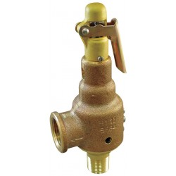 Pentair - 6010JHV01-KM0050 - Bronze Safety Relief Valve, MNPT Inlet Type, FNPT Outlet Type