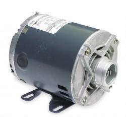 Marathon Electric / Regal Beloit - 5KH32FN5598X - 1/3 HP Split-Phase Carbonator Pump Motor, 1725 Nameplate RPM, 115 Voltage, 48Y Frame