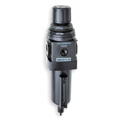 Wilkerson - B28-06-FL00 - 3/4 NPT Filter/Regulator, 125 cfm Max. Flow, 250 psi Max. Pressure