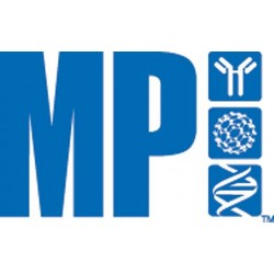 MP Biomedicals - 04811030 - Sodium Dodecyl Sulfate, 1kg