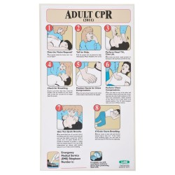 Accuform Signs - 197717 - First Aid Poster, English, 19-1/2 x 11, 1 EA