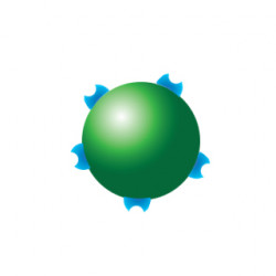 PerkinElmer - AP125TB-R - Streptavidin AlphaPlex 545 Acceptor Beads 25 mg