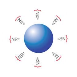 PerkinElmer - AS101M - Nickel Chelate Alpha Donor beads, 5 mg