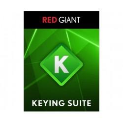 Red Giant - BUND-PKEY-UD - Keying Suite 11.1 Upgrade