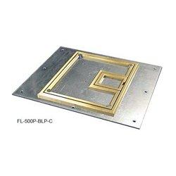 FSR - 17,546.00 - Cover with 1/4in Brass Carpet Flange (Lift off door)