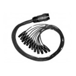 Clark Wire & Cable - XDT-12M-MXLR-3 - DT12 Female to 12 XLR Male Snake 3 Foot